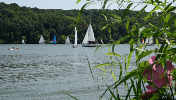 Many boats on Lake Arthur at Moraine State Park.